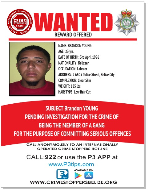 WANTED: Brandon Young
